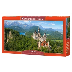 View of the Neuschwanstein Castle - Germany