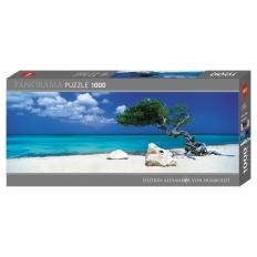 Divi Divi Tree - Aruba Netherlands Antilles