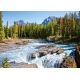 Athabasca River - Jasper National Park - Kanada