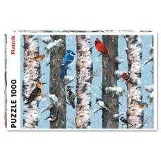 Wintervögel