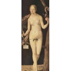 Eva - Albrecht Dürer