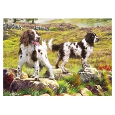 Spaniels On The Moor