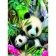 Lieber Panda