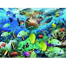 Unterwasserparadies