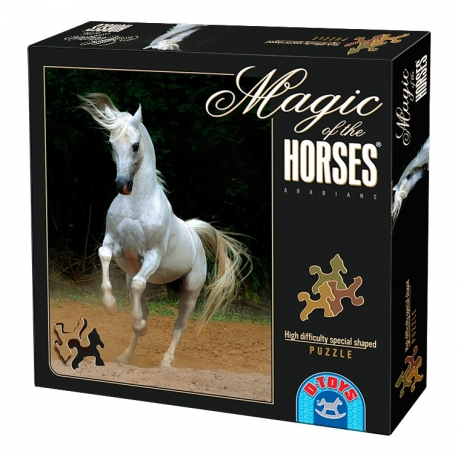 Steigender arabischer Schimmel -  Magie der Pferde