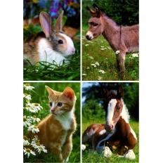 Tiere auf der Wiese - Kaninchen - Esel - Katze - Pferd