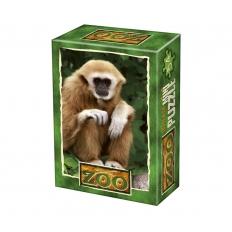 Gibbon Affe - Ruhepause