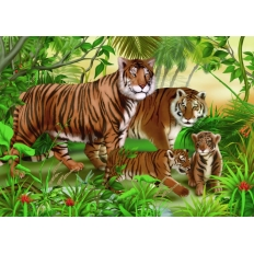 Tigerfamilie im Jungle