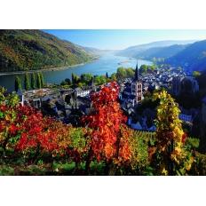 Weinreben am Rhein