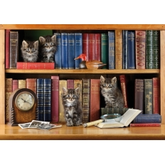 Puss in Books