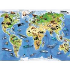 Bunte Tierweltkarte