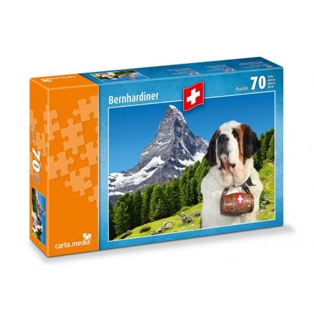 Bernhadiner vor Matterhorn