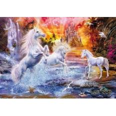 Wild Unicorns