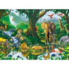 Harmonie im Dschungel