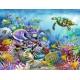 Lebendige Unterwasserwelt